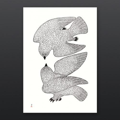 Sparring Owls Quvianaqtuk Pudlat Inuit Cape Dorset Prints 2017 Stonecut
