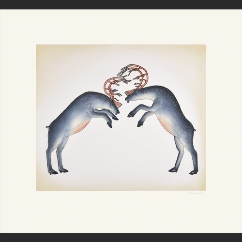 Pitseolak Niviaqsi inuit Rutting Caribou cape dorset print collection 2016 560