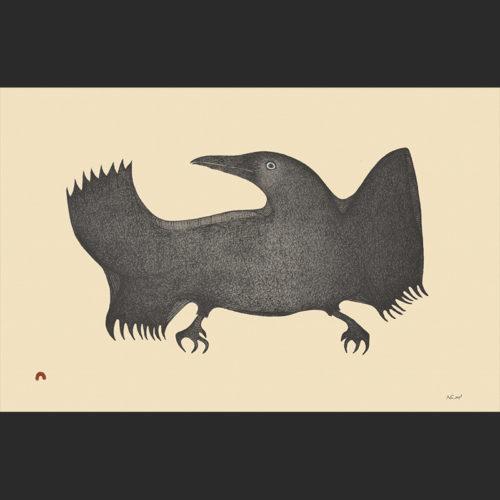 TWILIGHT RAVEN Cape Dorset Print Collection 2015 PITALOOSIE SAILA Medium: Lithograph Paper: Arches Cream Printer: Niveaksie Quvianaqtuliaq Size: 15 x 22 ½ inches (38.1 x 57 cm) Price: $650