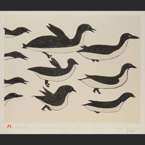 "Flock of Birds Ohotaq Mikkigak Inuit Cape Dorset Lithograph & Chine Colle c. 2001 #24/50 18""W x 15""H ohotaq mikkigak print lithograph chine colle inuit cape dorset"