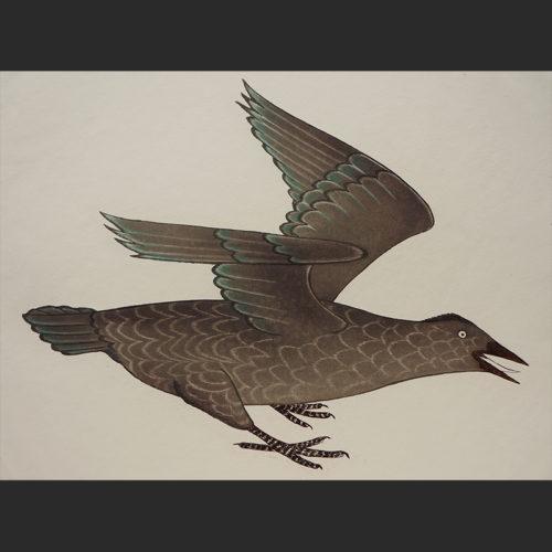 "Kananginak Pootoogook Inuit Cape Dorset Etching c. 1995 #16/50 25.75""W x 19""H Raven raven etching kananginak pootoogook 1995 inuit cape dorset etching nunavut canada canadian"