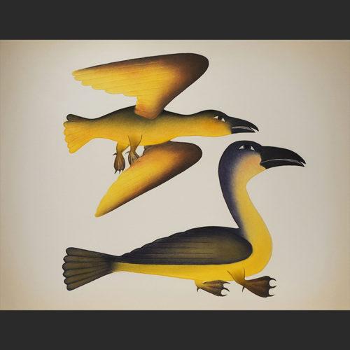 "Sunlit Ravens Kenojuak Ashevak Inuit Cape Cape Dorset Etching & Aquatint c. 2009 40""W x 31"".Hsunlit ravens kenojuak ashevak inuit cape dorset nunavut print etching aquatint 2009 canada canadian"