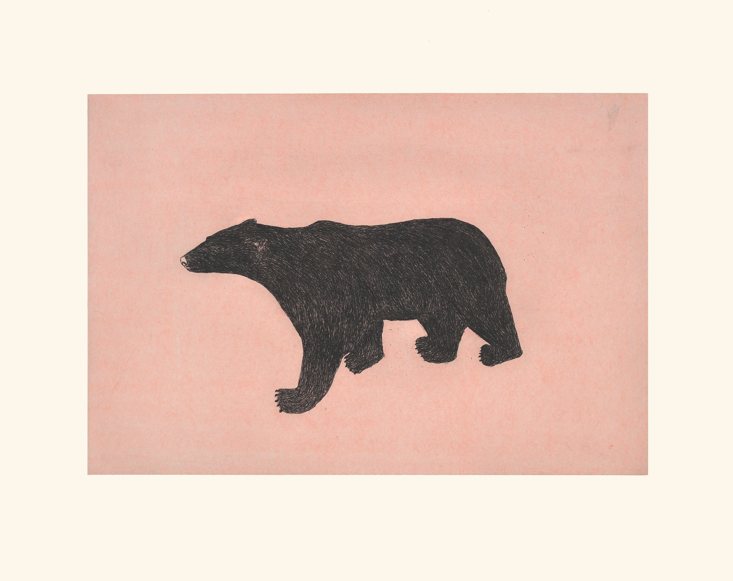 """OHITO ASHOONA 11. Prowling Bear Etching & Chine Collé Paper: Arches White Printer: Studio PM 64 x 80 cm 25 ¼"""" x 31 ½"""" $ 800 $640 $600"""